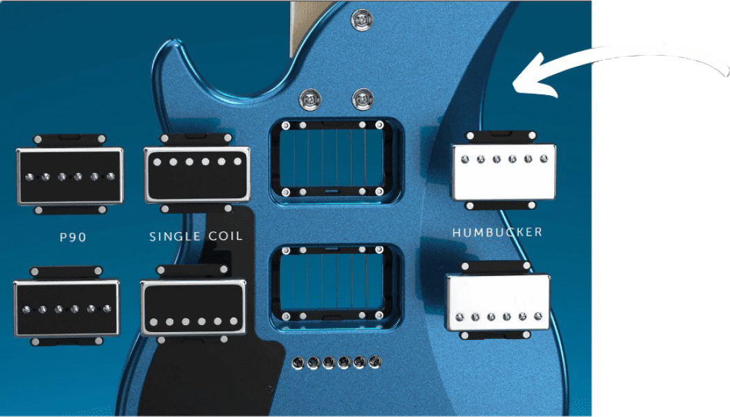 TRINITY BY RELISH PATENTED PICKUP MOUNTING SYSTEM ピックアップ バリエーション